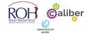 De huisartsenpraktijk en het netwerk rondom de chronische en acute complexe voetzorg bij diabetische ulcera (ischemische- en oedemateuse wonden) Praktijkondersteuner(s)