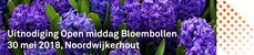 Open middag Bloembollen Noordwijkerhout 30 mei
