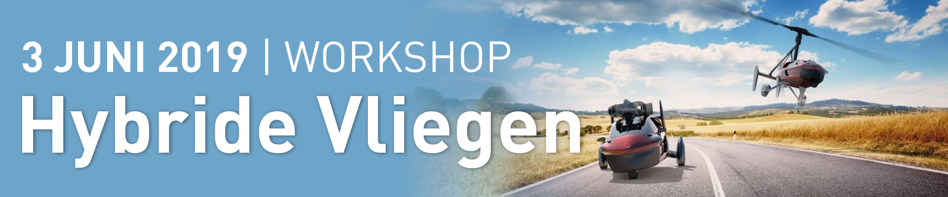 Workshop hybride vliegen