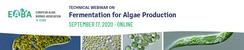 Fermentation for Algae Production