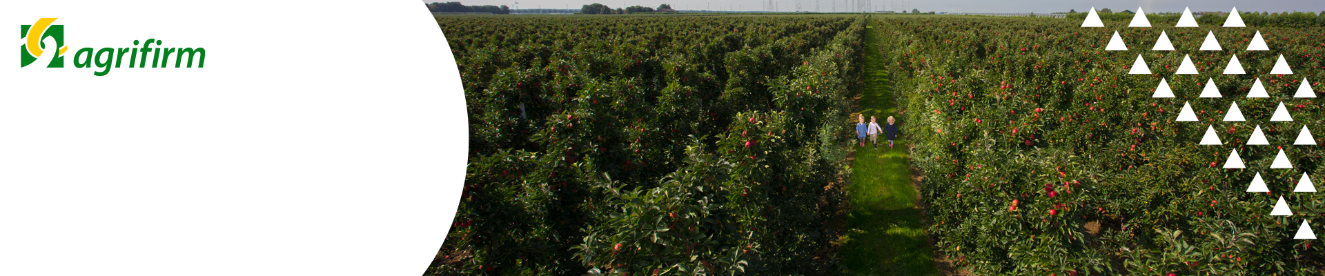 Online kennisbijeenkomsten Fruit appel en peer