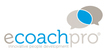 Online International Masterclass e-Coaching (group 29)
