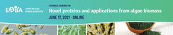 Novel proteins and applications from algae biomass