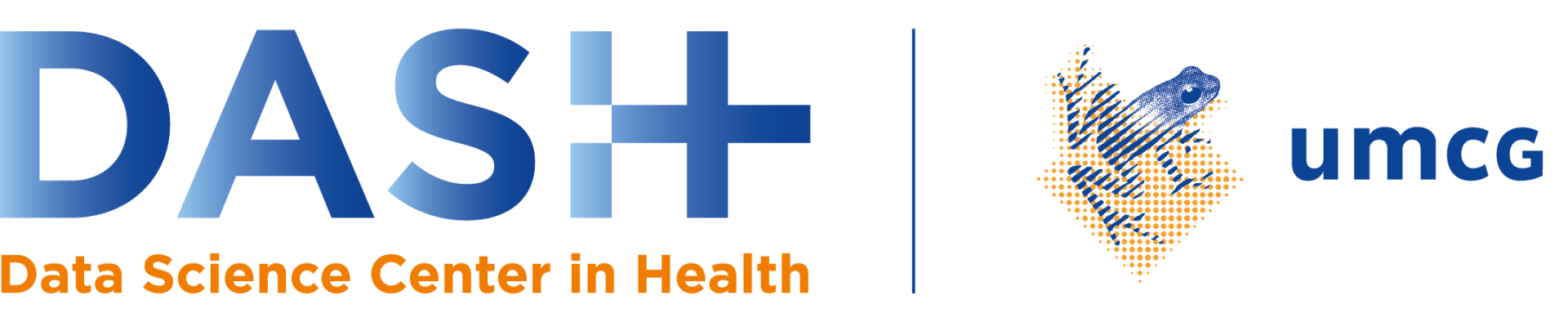 Summer School Data Science and AI in Health