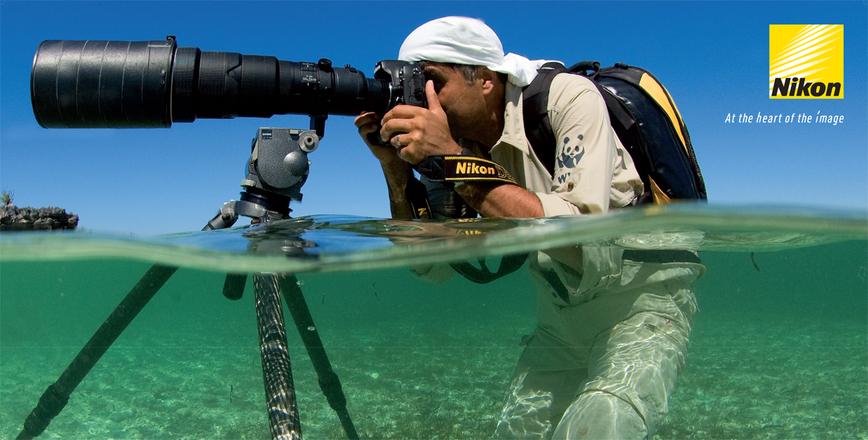 Ultieme Wildlifefotografie