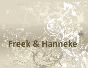 Bruiloft Freek en Hanneke