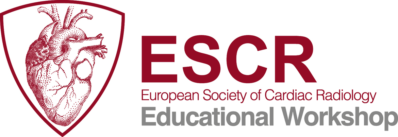 ESCR Educational Workshop - Module 1: CT primer for radiologists