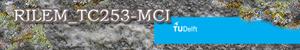 RILEM TC 253-MCI