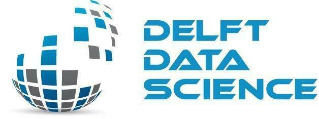 Delft Data Science Seminar