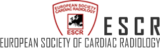 ESCR Educational Hands-On Course - Module 1: CT primer for radiologists (29.02.-01.03.16)