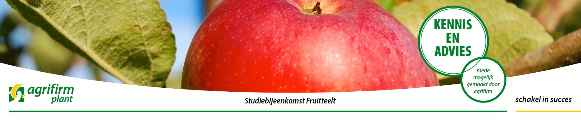 Studiebijeenkomst Fruitteelt Kraggenburg
