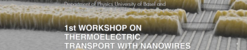 1st Workshop on Thermo-Electric Transport in Nanowires