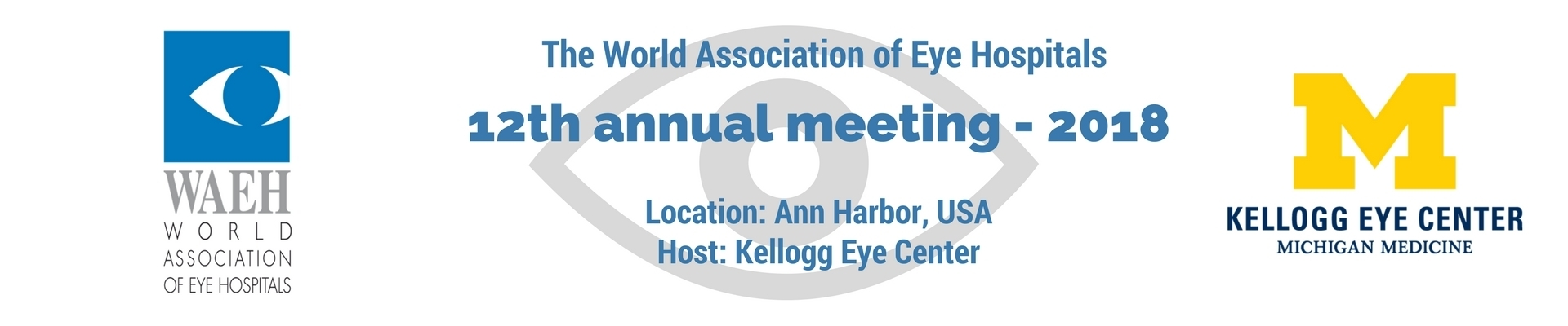 12th Annual Meeting of The World Association of Eye Hospitals